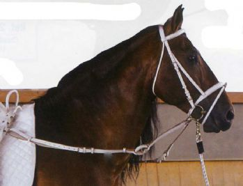 Vaulting training bridle (matches white vaulting roller set)